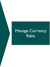 FX Overlay to Manage Currency Risks